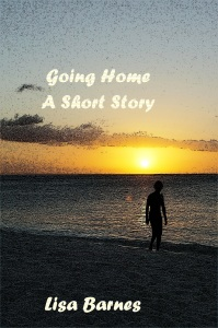 Going Home by Lisa Barnes